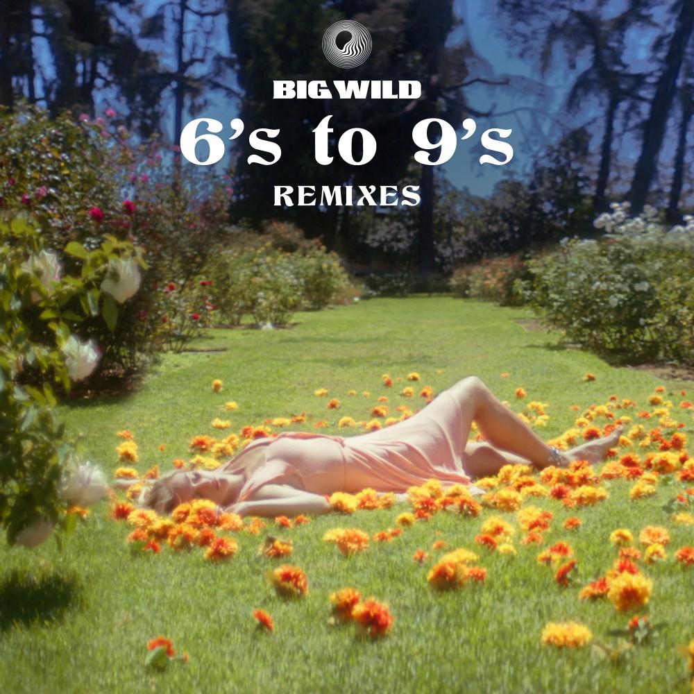 6's to 9's (Remixes) -