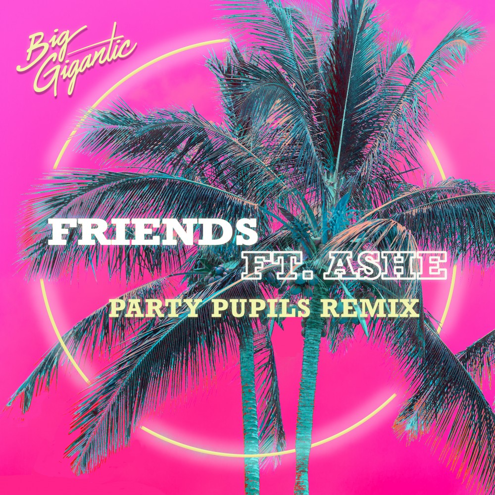 Friends (Party Pupils Remix) -