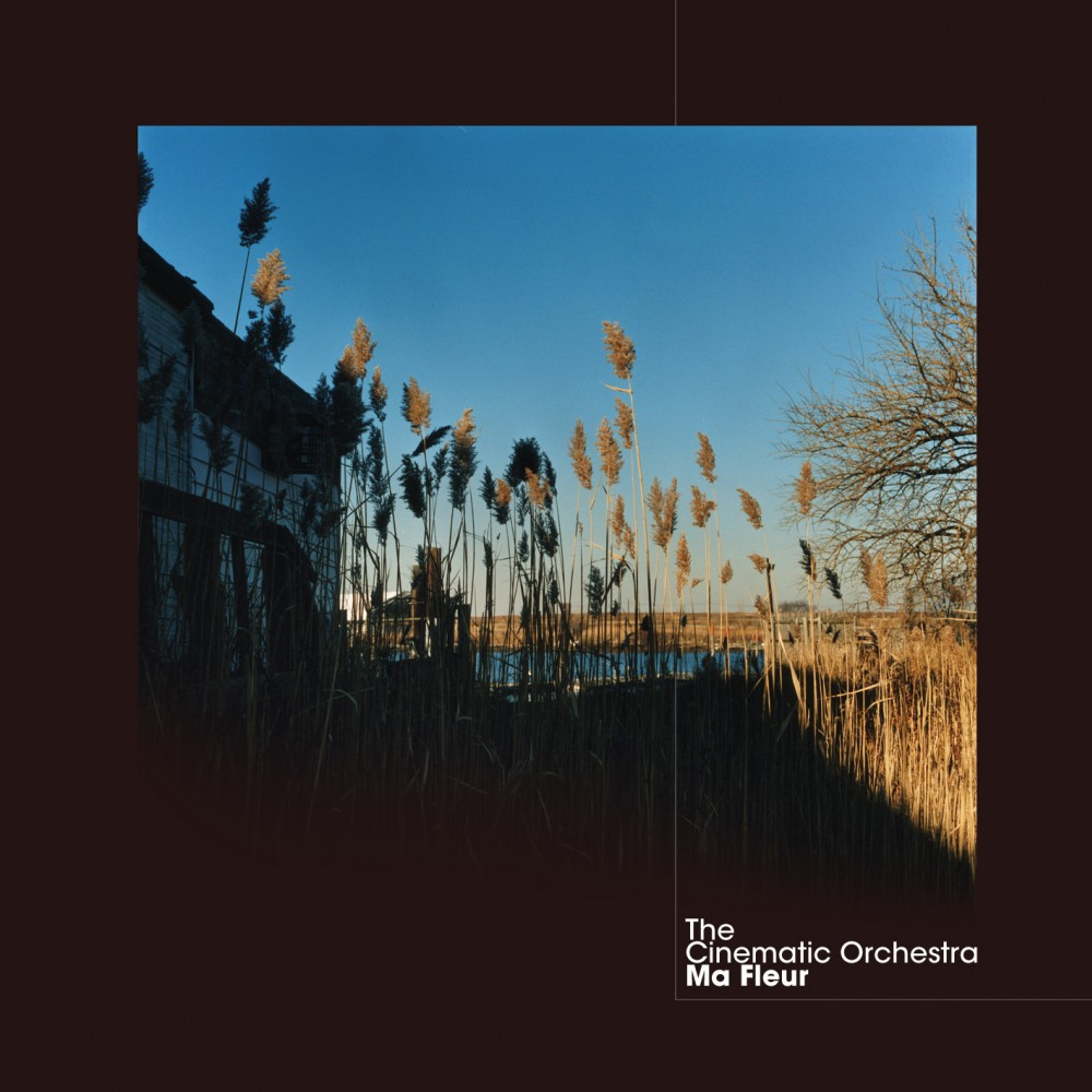 Ma Fleur The Cinematic Orchestra Release Ninja Tune