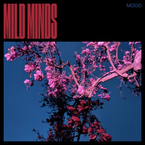 MOOD - Mild Minds