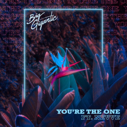 You're The One - Big Gigantic featuring Nevve